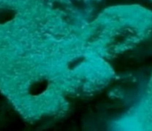 Undersea Roman Town Draws Divers