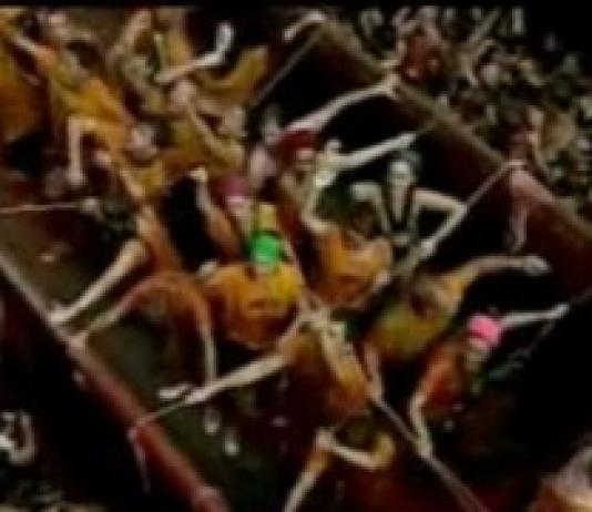Spain's Tomato Food Fight