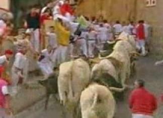 Running the bulls in Spain
