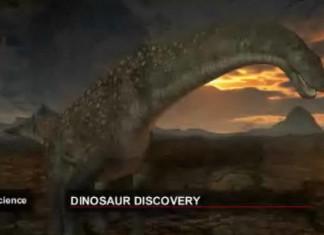 Gigantic 12 metre-long dinosaur discovery